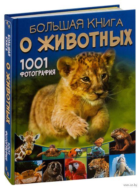 Большая книга о животных. 1001 фотография — фото, картинка