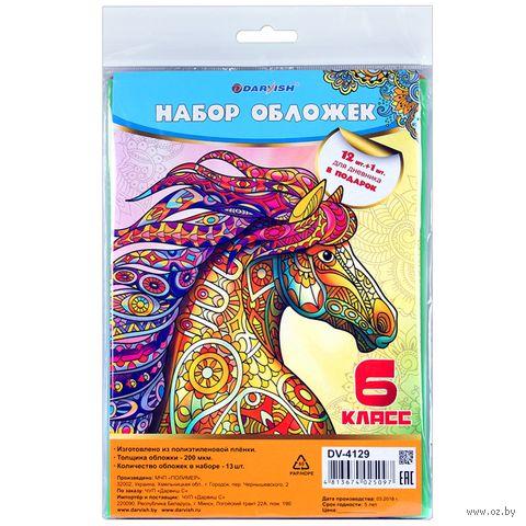 "Набор обложек ""6 класс"" (12+1 шт)"