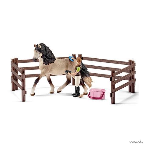 """Набор """"Уход за лошадьми"""""""