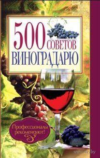 500 советов виноградарю