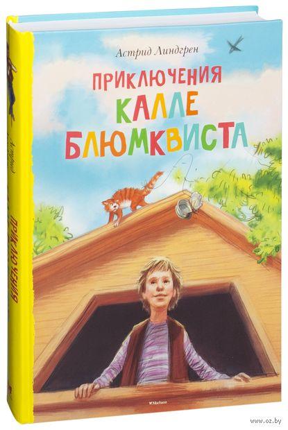 Приключения Калле Блюмквиста — фото, картинка