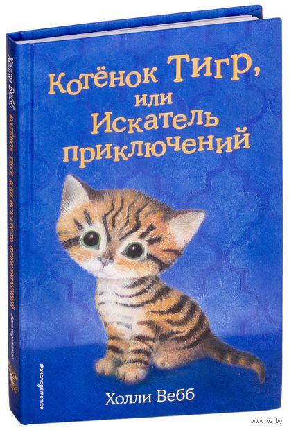 Котёнок Тигр, или Искатель приключений — фото, картинка