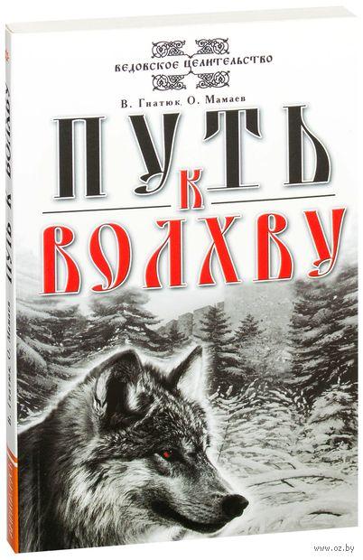 Путь к волхву. Валентин Гнатюк, Олег Мамаев