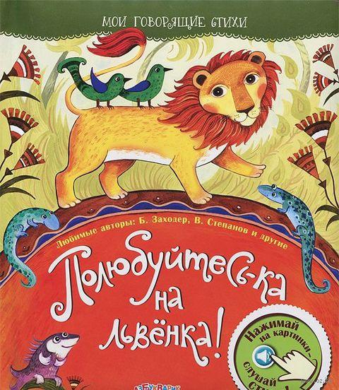Полюбуйтесь-ка на львенка!