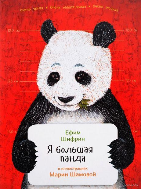 Я большая панда — фото, картинка