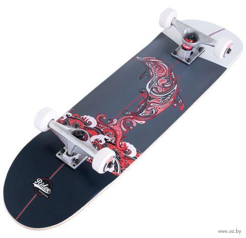 """Скейтборд """"Blacksea"""" — фото, картинка"""