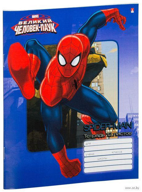 """Тетрадь в клетку """"Дисней. Человек-паук"""" (12 листов; в ассортименте) — фото, картинка"""