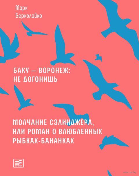 Баку - Воронеж: не догонишь — фото, картинка
