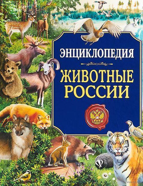 Животные России — фото, картинка