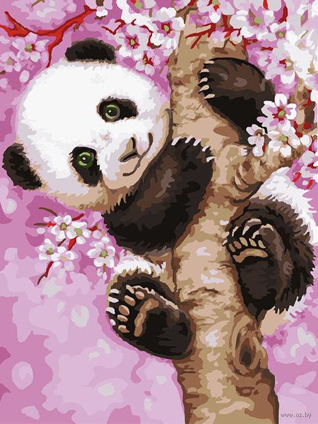 """Картина по номерам """"Медвежонок панды"""" (300х400 мм; арт. PC3040052) — фото, картинка"""
