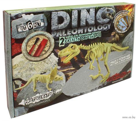 "Набор палеонтолога ""Dino Paleontology"" (арт. DP-01-03) — фото, картинка"