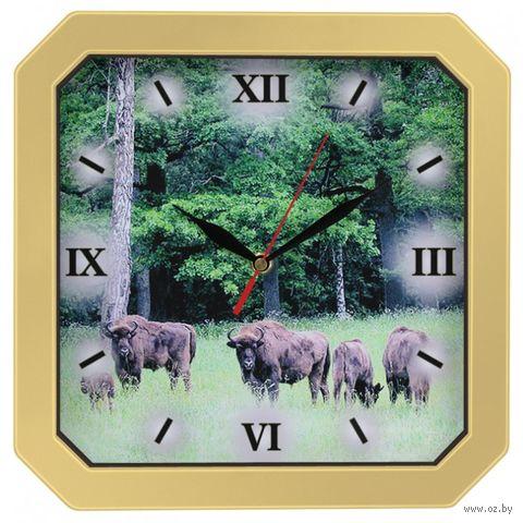 Часы настенные (29х29 см; арт. 31371320) — фото, картинка