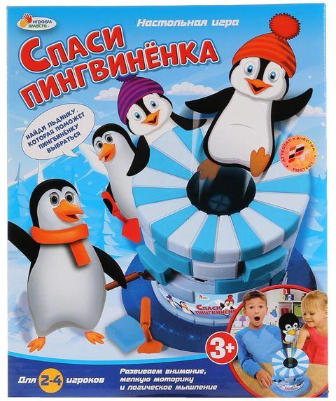 Спасти пингвинёнка — фото, картинка