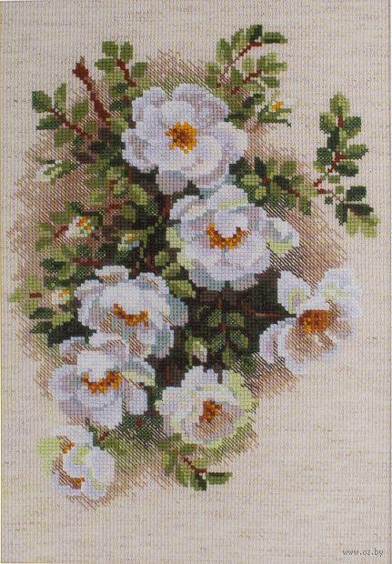 """Вышивка крестом """"Белый шиповник"""" (арт. 1351)"""