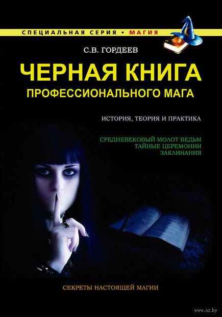 Черная книга профессионального мага. Сергей Гордеев