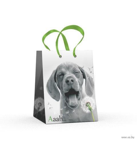 """Пакет бумажный подарочный """"Щенки. Контрасты"""" (11,1х13,7х6,2 см) — фото, картинка"""