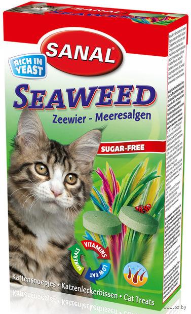 "Лакомство для кошек ""Seaweed"" (50 г) — фото, картинка"