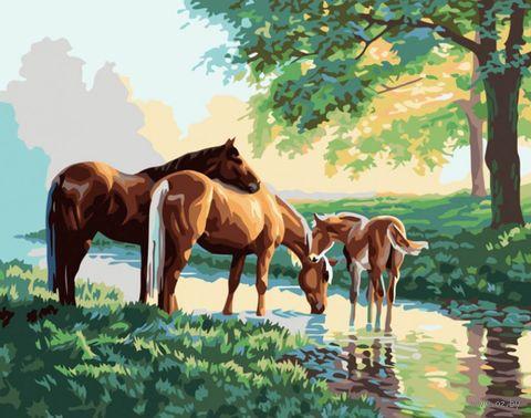 """Картина по номерам """"Скакуны на водопое"""" (400х500 мм) — фото, картинка"""