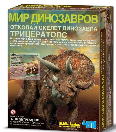 """Набор палеонтолога """"Скелет Трицератопса"""" — фото, картинка"""
