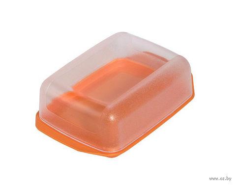 Масленка пластмассовая с прозрачной крышкой (16*10 см)