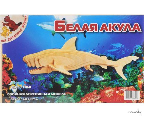 """Сборная деревянная модель """"Белая акула"""" — фото, картинка"""