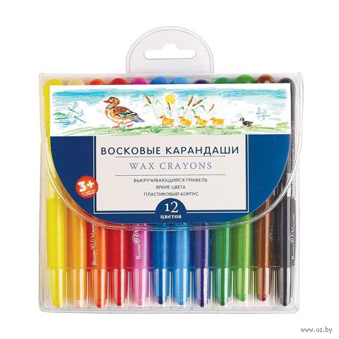 """Набор карандашей цветных восковых """"MultiColor"""" (12 цветов) — фото, картинка"""