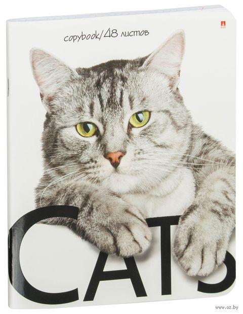 """Тетрадь полуобщая в клетку """"Кошки"""" (48 листов; в ассортименте) — фото, картинка"""