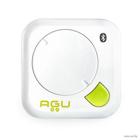Термометр AGU STI2 — фото, картинка