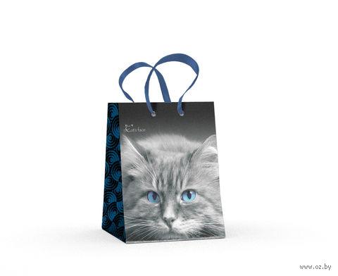 """Пакет бумажный подарочный """"Кошки. Яркий взгляд"""" (11,1х13,7х6,2 см) — фото, картинка"""