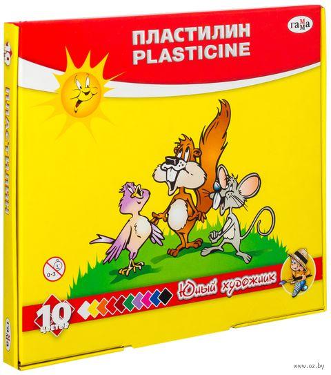 """Пластилин """"Юный художник"""" (10 цветов; со стеком)"""