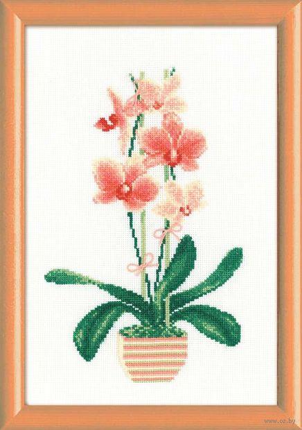"Вышивка крестом ""Желтая орхидея"" (210х300 мм) — фото, картинка"