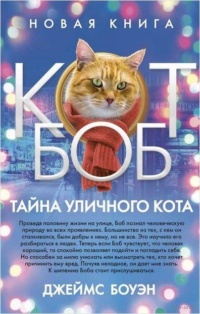 Тайна уличного кота — фото, картинка