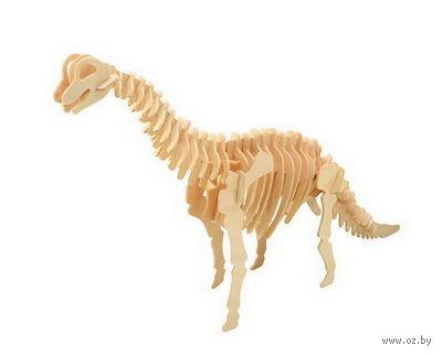 """Сборная деревянная модель """"Брахиозавр"""" (бракозавр) — фото, картинка"""