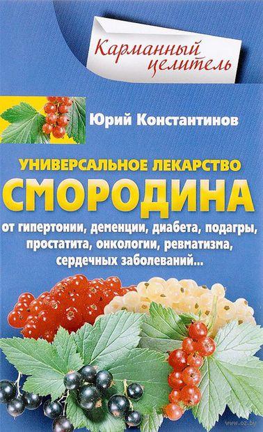 Уникальное лекарство Смородина — фото, картинка