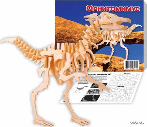 """Сборная деревянная модель """"Орнитомимус"""" — фото, картинка"""