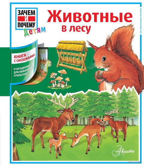 Животные в лесу. Сабинэ Штаубер, доктор Хайке Германн