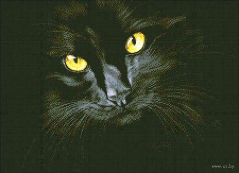 "Алмазная вышивка-мозаика ""Чёрная кошка"" (380х520 мм) — фото, картинка"