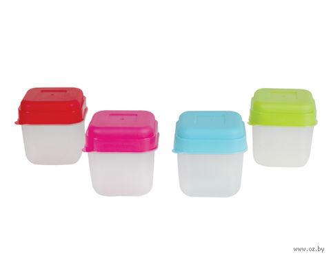 Набор банок для сыпучих продуктов, пластмассовых (4 шт, 100 мл)