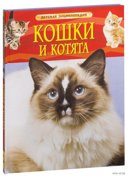Кошки и котята. Детская энциклопедия — фото, картинка