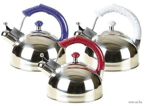 Чайник металлический со свистком (3 л; арт. Mr-1309) — фото, картинка