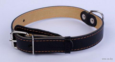 Ошейник из натуральной кожи (38-50 см; черный) — фото, картинка