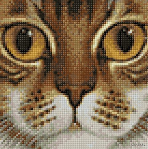 "Алмазная вышивка-мозаика ""Рыжеглазый кот"" (200х200 мм) — фото, картинка"