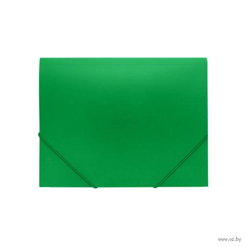 """Папка """"Darvish"""" на резинке DV055R (А4; цвет: зеленый)"""