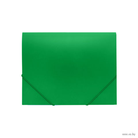 "Папка на резинке ""Darvish"" (А4; зеленая; арт. DV055R)"