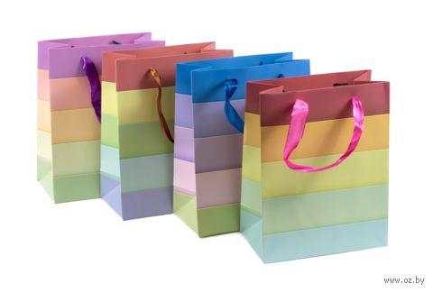 Пакет бумажный подарочный (18х23х10 см, продается только в розничной сети) — фото, картинка