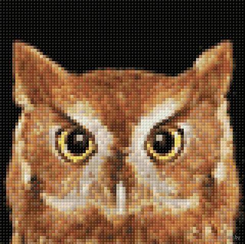 "Алмазная вышивка-мозаика ""Мудрый филин"" (200х200 мм) — фото, картинка"
