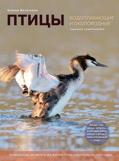 Птицы. Водоплавающие и околоводные (со звуковым модулем). К. Митителло