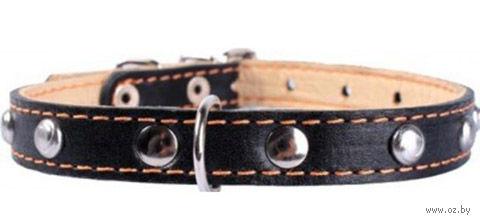 Ошейник двойной из натуральной кожи (38-50 см; черный) — фото, картинка