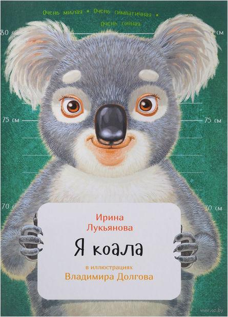 Я коала — фото, картинка