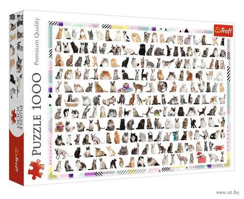 """Пазл """"208 кошек"""" (1000 элементов) — фото, картинка"""